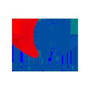 carrofour