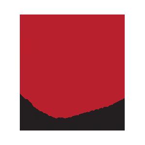 turk_bobrek_vakfi